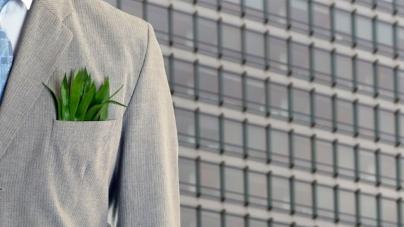 Διέξοδος στην ανεργία: «Πράσινα» επαγγέλματα με μέλλον