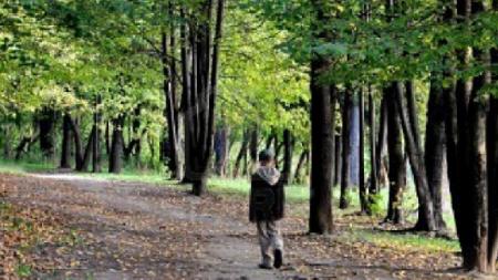 Ιαπωνία: Άφησαν το 7χρονο παιδί τους για τιμωρία στο δάσος και το έχασαν