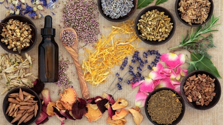Τέσσερα βότανα για να ρίξετε τη χοληστερίνη