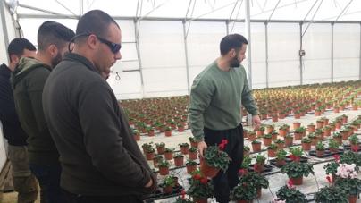 """Eκπαιδευτική επίσκεψη των φοιτητών του Προγράμματος Σπουδών """"Κηποτεχνία και Σχεδιασμός Κήπου"""" του KES College"""