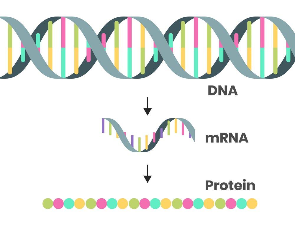 Πέρα από την COVID-19 εποχή: Το μέλλον του mRNA προδιαγράφεται λαμπρό!